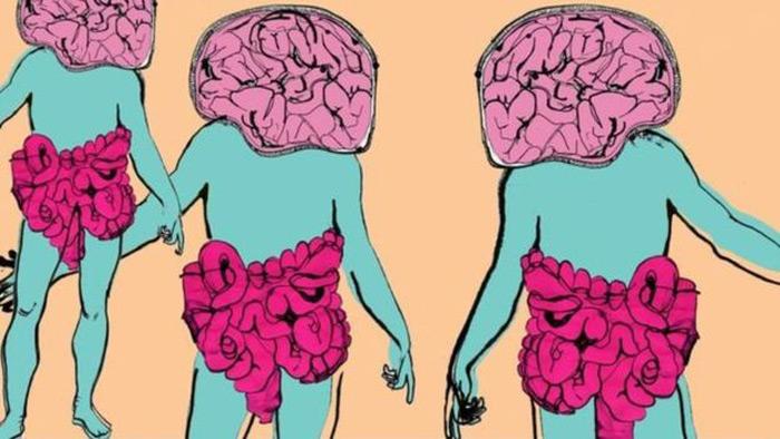 ব্যাকটেরিয়া যেভাবে মানুষের মেজাজ নিয়ন্ত্রণ করে